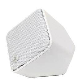 Boston Acoustics SoundWare Indoor/Outdoor Speaker