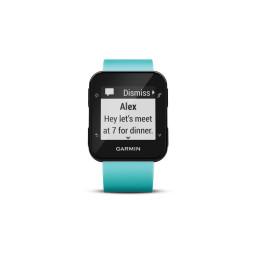 Garmin Forerunner 35 GPS Reloj de Correr con ritmo cardíaco basado en la muñeca - Frost Blue